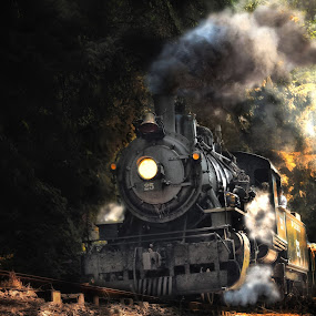 MCCRR Mountain Side by Nickel Plate Photographics - Transportation Trains