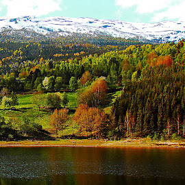 Norway - May 22 by Dee Haun - Landscapes Mountains & Hills ( 2008, may, colorful trees, lake, h0955ce4, landscapes, mountains & hills, norway )