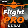 Pro Flight Simulator Dubai