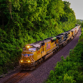 Union Pacific Train by Janice Poole - Transportation Trains