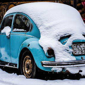 Snow Beetle by Péter Nagy - Transportation Automobiles ( vw, car, winter, blue, ice, snow, beetle )