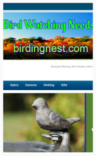Birding Nest - screenshot