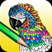 Game Mandala - adults coloring book APK for Kindle