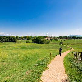 MEADOW by Diptarka Gupta - Landscapes Prairies, Meadows & Fields ( leading line, fence, rome, green, path, meadow, landscape, italy )