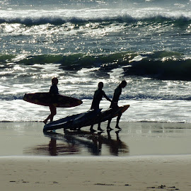 Surf Fun by Di Mc - Novices Only Landscapes ( surfboards, gold coast, waves, australia, play, surf, surfers )