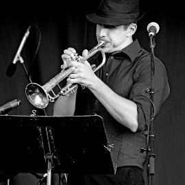All That Jazz! by Judy Laliberte - Novices Only Street & Candid ( music, person, performance, jazz, b & w, high contrast )