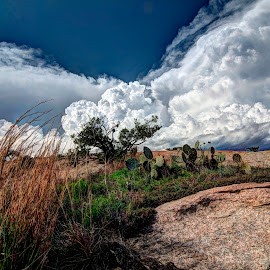Storm Rolling In by Kent Moody - Landscapes Cloud Formations ( clouds, cacti, enchanted rock, thunderstorm, grass, texas,  )