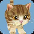 Game Dancing Cat Simulator apk for kindle fire