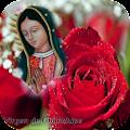 Virgen De Guadalupe Necklace Rose Gold APK for Ubuntu