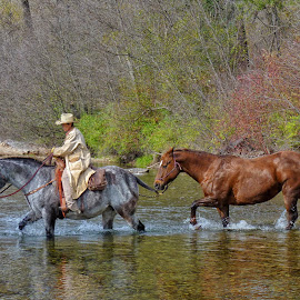 Headin' Home by Twin Wranglers Baker - Transportation Other ( horse and rider, horses, montana, horse, western, travel, river )