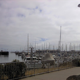 Boats in Monterey, CA by Sarah Farber - Transportation Boats