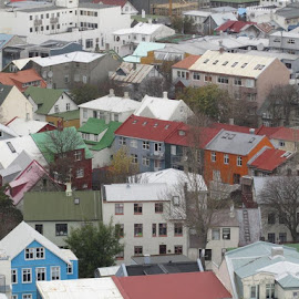 Reykiavik by Hrvoje Sunjic - City,  Street & Park  Neighborhoods ( reikyavik, houses, rooftops )
