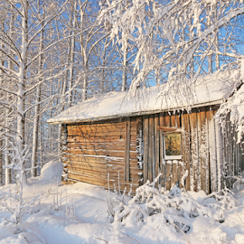 Old sauna by Mia Ikonen - Buildings & Architecture Other Exteriors ( old, winter, cold, finland, sauna,  )