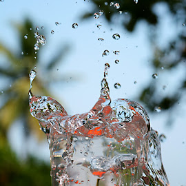 Frame Freeze.. by Abhiraj Krishna - Abstract Water Drops & Splashes ( water, sky, nature, tomato, splash, droplets )