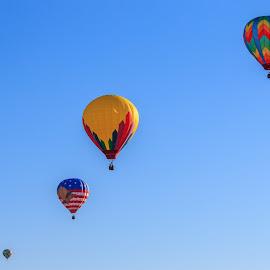 Lined Transportation by Rananjay Kumar - Transportation Other ( #event, #balloon, #hotairballoon, #northcarolina, #colorful, #usa, #canon )