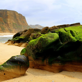 Green rocks by Gil Reis - Nature Up Close Rock & Stone ( beaches, places, rocks, nature, sands, colors )