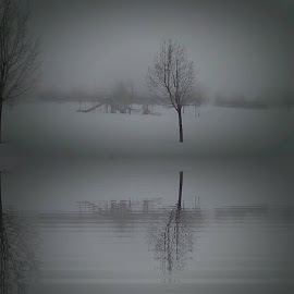 by Jan Cochran - Digital Art Places ( winter, fog, parks )