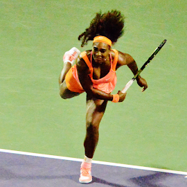 Serena Williams - Miami Open by Marcello Toldi - Sports & Fitness Tennis
