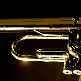 Dixie by Tigi Borg - Artistic Objects Other Objects ( music, color, jazz, 2012, tigiphoto, fine art, trumpet )