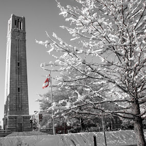 Red Falg by Thomas Shaw - Buildings & Architecture Statues & Monuments ( bell, university, tower, sky, flag, red, black and white, snow, landscape, raleigh, photography, north carolina )