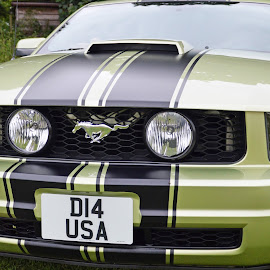 American Muscle by Neil Wilson - Transportation Automobiles