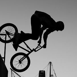 In the Air by Randi Hodson - Sports & Fitness Cycling ( rider, black and white, silhouette, bicycle )