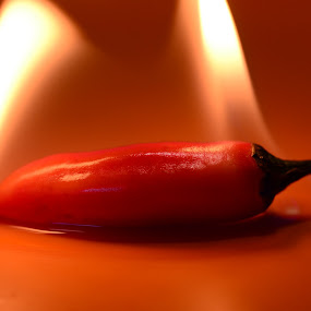 Red Hot Chilly Peppers by Dibyendu Banik - Novices Only Objects & Still Life ( red hot chilly peppers )