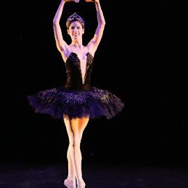 Ballet by Albert de Weerd - Sports & Fitness Other Sports