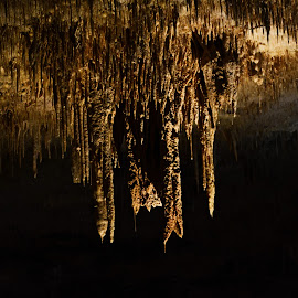 Chandeliers underground by Jaideep RC Banerjee - Landscapes Caves & Formations