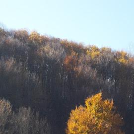 Гора by Georgi Kolev - Novices Only Landscapes ( небе., гора., цветове., есен., време. )