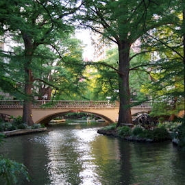 San Antonio, TX by Barbara Suggs - City,  Street & Park  Historic Districts