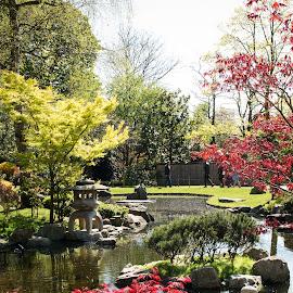 Kyoto Garden, Holland Park, London by Lori Rider - City,  Street & Park  City Parks