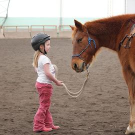 Child vs horse by Kim Tindol - Babies & Children Children Candids