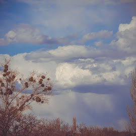 by Vladislav Matvienko - Landscapes Cloud Formations