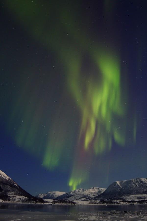 PWCwinter by Benny Høynes - Landscapes Starscapes ( pwcwinter, aorora, winter, ice, boreoalis )