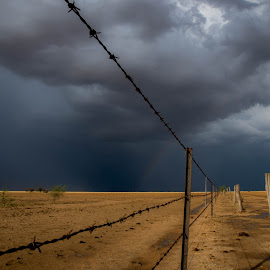 Over the Fence by Suzanne McCowen - Landscapes Prairies, Meadows & Fields ( #landscape, #outbackqueensland, #drought, #fenceline, #rainclouds,  )