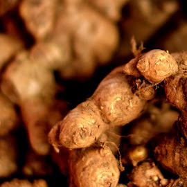 Ginger. by Vinod Rajan - Food & Drink Fruits & Vegetables ( fruits, fruit, fruits and vegetables, vegetable, brown, vegetables, food,  )