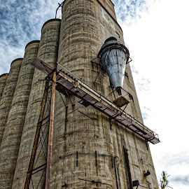Harvest Storage by Deb Tomoi - Buildings & Architecture Decaying & Abandoned ( building, agriculture, farming, abandoned )