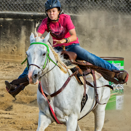 Barrel Racer 2 by Joe Saladino - Sports & Fitness Other Sports ( girl, barrel race, horse, race, competition )