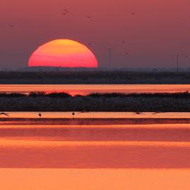 by Emmanuele Baldassarre - Landscapes Sunsets & Sunrises (  )