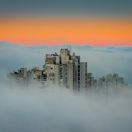 Fog by Dado Barić - Landscapes Weather