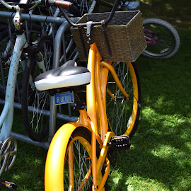 Ruth by Steve Hayes - Novices Only Objects & Still Life ( license plate, bike, basket, yellow, chautauqua, bicycle )