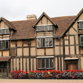 Shakespeare's house by Sue Rickhuss - Buildings & Architecture Public & Historical