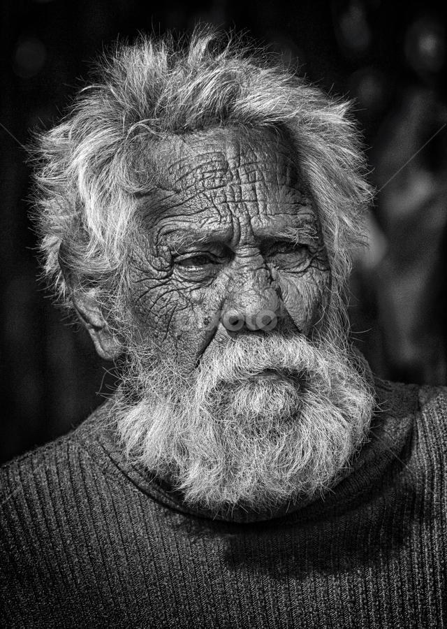 Old is Gold by Debajit Bose - People Portraits of Men ( white beard, indian, wrinkel, old man, people, portrait, man,  )
