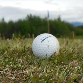 by Tatyana Jones - Sports & Fitness Golf
