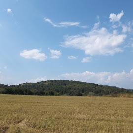 Ден. by Georgi Kolev - Landscapes Prairies, Meadows & Fields ( облаци., небе., нива., гори., хълм. )
