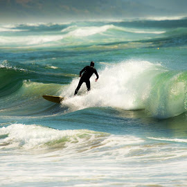 Lone Paddle Surfer by Rich Kapple - People Street & Candids ( KidsOfSummer )