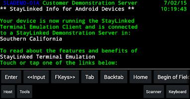 Screenshot of StayLinked Terminal Emulation