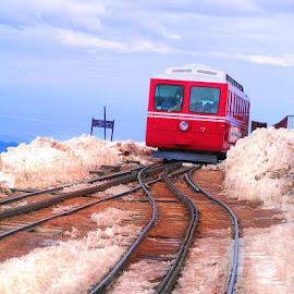Cog Train by Kristy Shamburg - Transportation Trains ( red, snow, colorado, train, cog train )