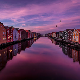 Trondheim Norway by Kennet Brandt - City,  Street & Park  Street Scenes